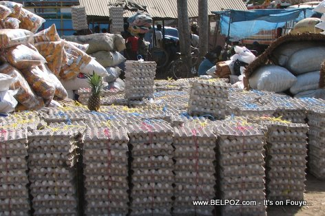 Eggs Imported to Haiti from Dominican Republic