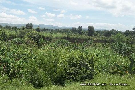 La Begue Haiti, Revisiting the Haitian Countryside