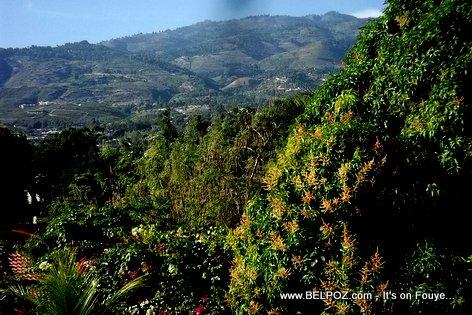 Greener Haiti - Mountain Top View from Pernier
