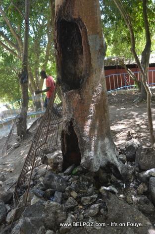 Chute Saut d'Eau Haiti