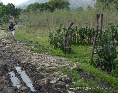 Andeyo Haiti - Yon bel ti anplasman