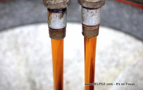 Vetiver Fragrance Oil Distilled in Haiti