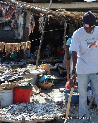 Haiti - Poisson seche nan marche Gonaives