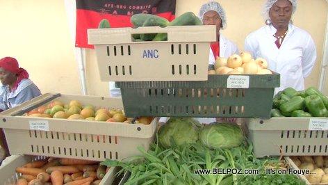 Fresh organic vegetables from Haiti