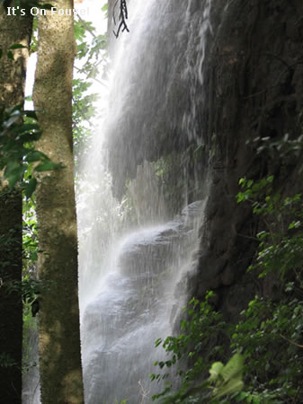 Bassin Zim Water Fall