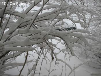 Canada after a snowstorm