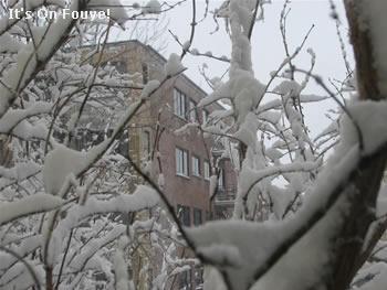 Winter: Snow in Canada