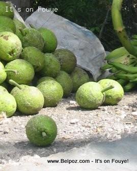 haitian breadfruit