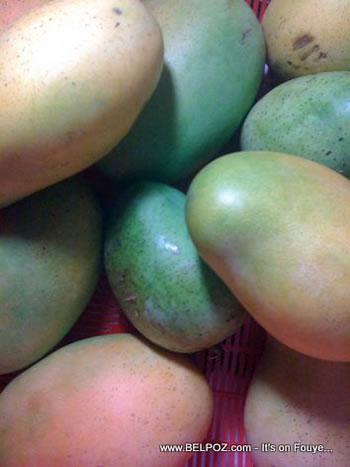 Fresh Mangoes From Haiti, Mango Blanc, Mango Jean Marie