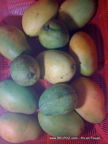 Mango Caribbean