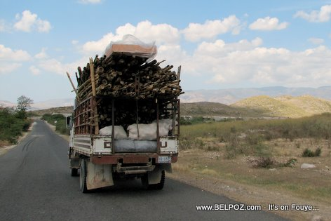Truck Load Of Bamboo Gonaives Haiti